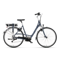 Batavus elektrische fietsen-Batavus Isola E-go