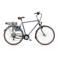 Batavus elektrische fietsen-Batavus Mont Blanc Easy