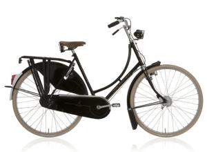Gazelle fietsen_2