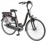 Pegasus elektrische fietsen-Ravenna 8