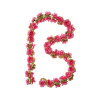 bloemenslinger