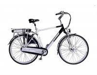 Goedkope elektrische fiets-Pro e-bike