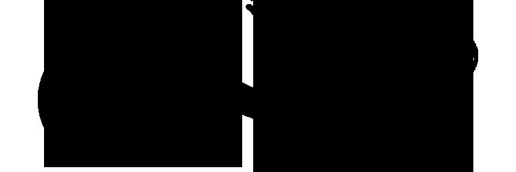 ligfiets